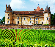 Burgundy - Walks Amongst The Grand Crus