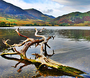 The Lake District Trail