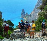 Going wild in Sardinia