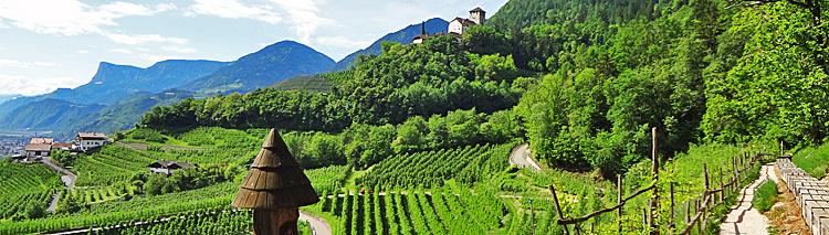 South Tyrolean Wine & Alpine Pasture Trail