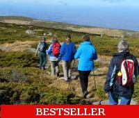 walk and hike on Mount Vitosha